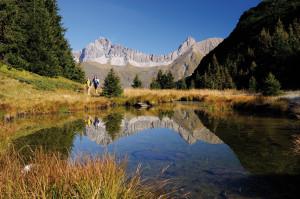 Natur-Schatzkästchen Alp Flix